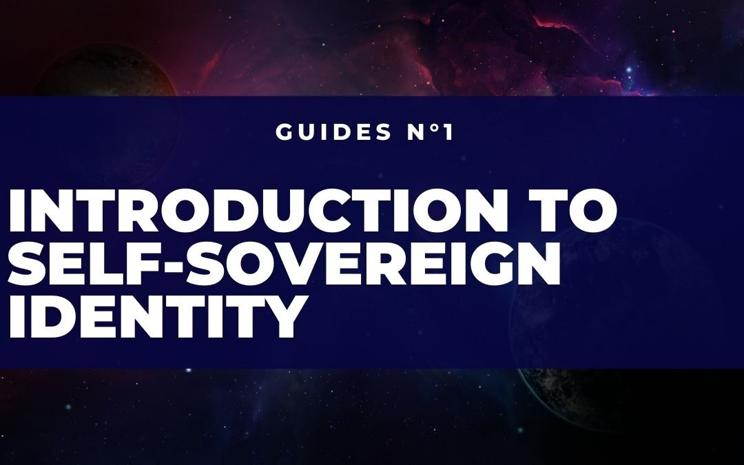 Introduction to Self-Sovereign Identity